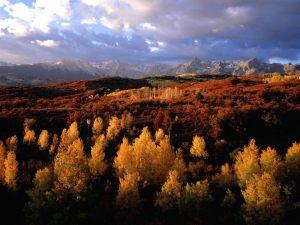 nuvens-ceu--montanhas-arvores-natureza-ec3fc